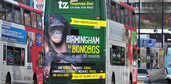 An example of Exterion's Bus Advertising Campaign